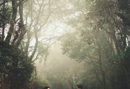 a couple standing & holding hands in front of trees
